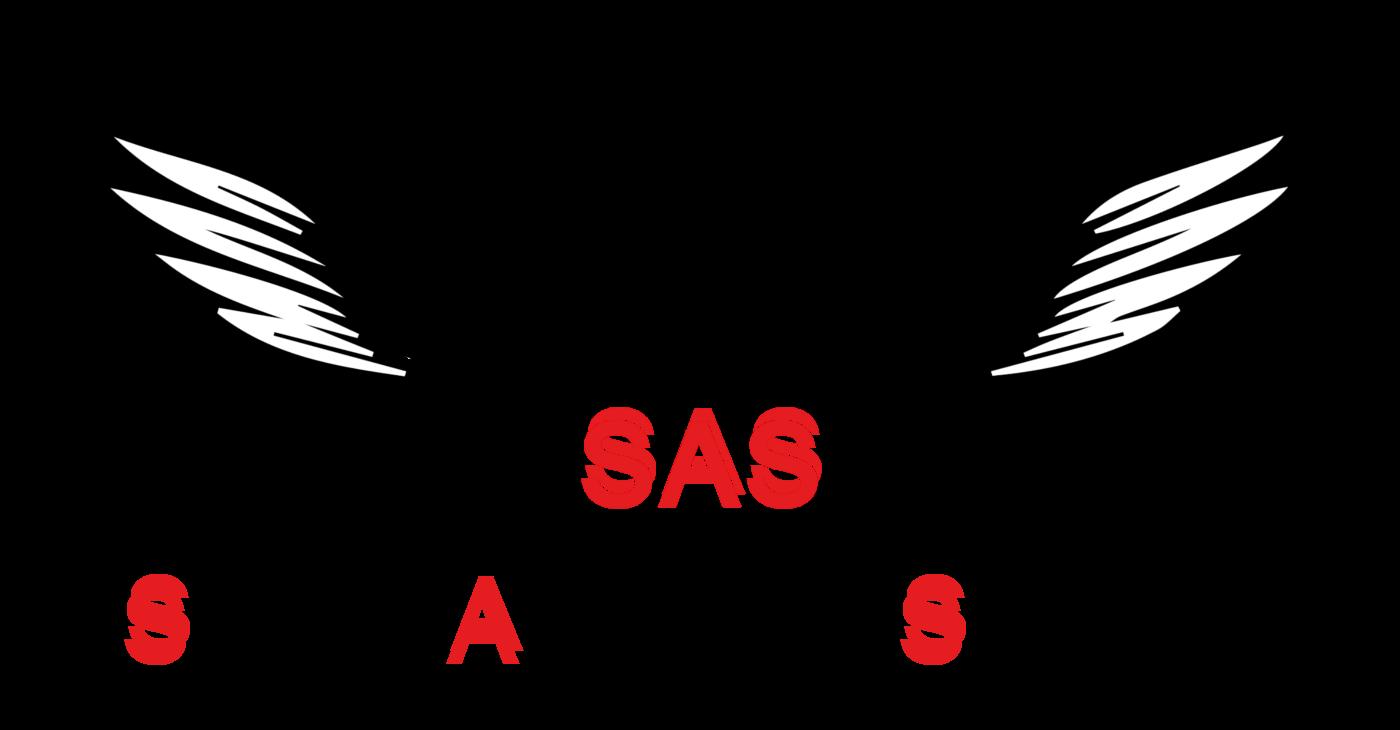Swiss Allround Service